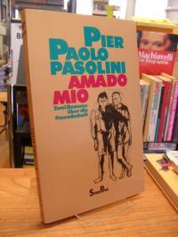 Pasolini, Amado mio – Zwei Romane über die Freundschaft,