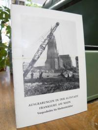 Fischer, Ausgrabungen in der Altstadt Frankfurt am Main – Vorgeschichte bis Hoch