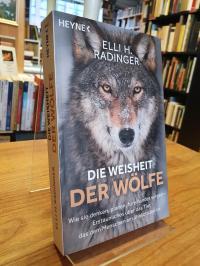 Radinger, Die Weisheit der Wölfe – Wie sie denken, planen, füreinander sorgen –