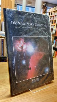 Riordan, Die Schatten der Schöpfung – Dunkle Materie und die Struktur des Univer