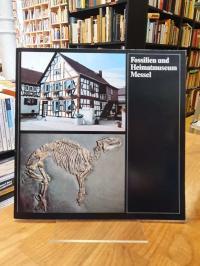 Fossilien- und Heimatmuseum  (Messel), Fossilien- und Heimatmuseum Messel,