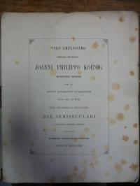 Mommsen, Viro amplissimo summeque reverendo Joanni Philippo Koenig Ministerii Se