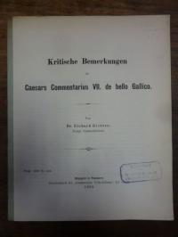 Dähn, Kritische Bemerkungen zu Caesars Commentarius VII. de bello Gallico,