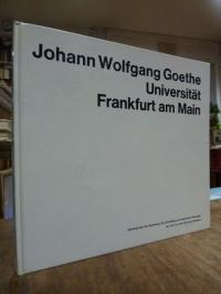 Flesch-Thebesius, Johann Wolfgang Goethe Universität Frankfurt am Main – Überbli