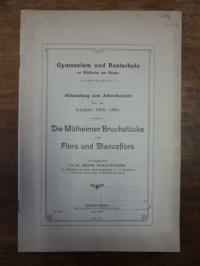 Schafstaedt, Die Mülheimer Bruchstücke von Flors und Blanzeflors,