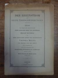 Lepsius, Der Rheinstrom und seine Überschwemmungen,