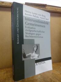 Lynen von Berg, Interventionsfeld Gemeinwesen – Evaluation zivilgesellschaftlich