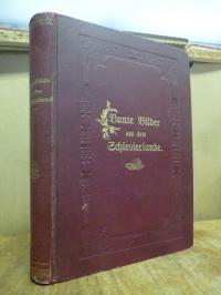 Pestalozzi-Verein (Hrsg.), Bunte Bilder aus dem Schlesierlande [Band 1],