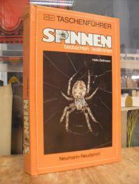 Bellmann, Spinnen – beobachten, bestimmen,