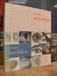 De Woorden en de Beelden – Tekst en beeld in de kunst van de twintigste eeuw = T