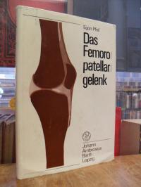 Pfeil, Das Femoropatellargelenk,