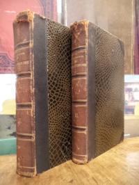 Ledebur, Handbuch der Eisenhüttenkunde – Für den Gebrauch im Betriebe wie zur Be