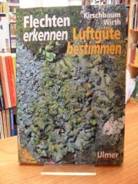 Kirschbaum, Flechten erkennen – Luftgüte bestimmen,