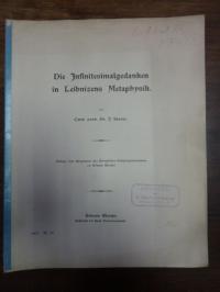 Sturm, Die Infinitesimalgedanken in Leibnizens Metaphysik,