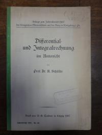 Schülke, Differential- und Integralrechnung im Unterricht,