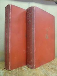 Dostojewski, Der Jüngling – Roman in zwei Bänden, Band 1 und Band 2,