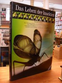 Imamori, Das Leben der Insekten,